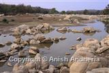 Pench River
